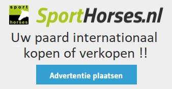 banner Sporthorses Hippische Ondernemer