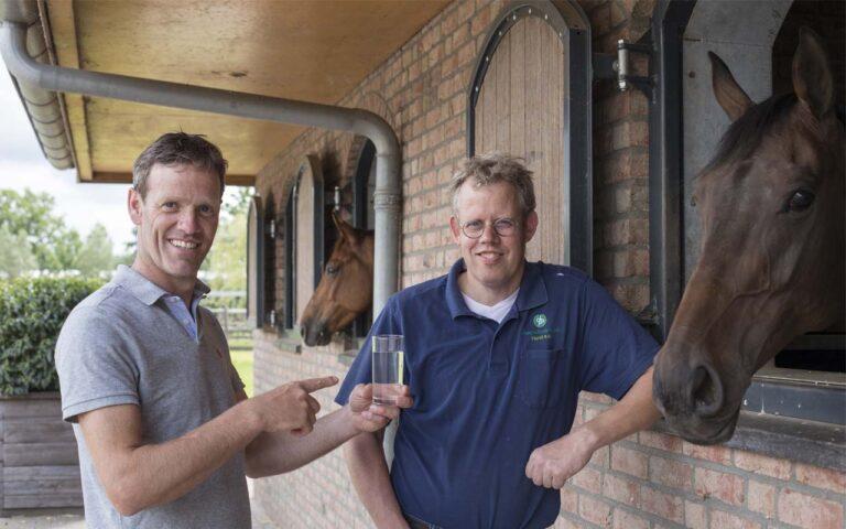 schoon water, paarden houden drinkwater