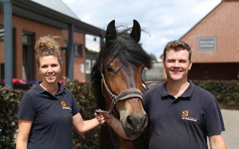 hippische ondernemer paardenbedrijf verkiezing